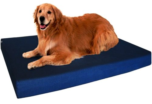 Dogbed4less Orthopedic Gel Memory Foam Dog Bed for Small,