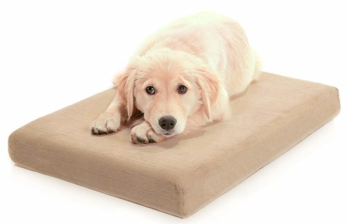Milliard Premium Orthopedic Memory Foam