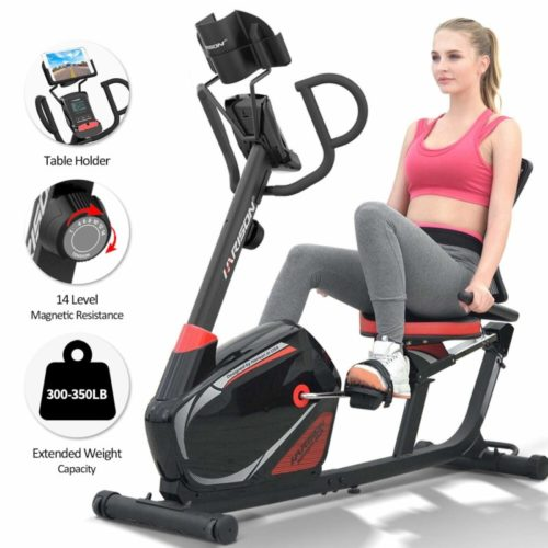 HARISON Magnetic Recumbent Exercise Bike Stationary 350 LBS Capacity with 14 Level Resistance, iPad Holder, Pulse, RPM, Adjustable Seat and Transport Wheels