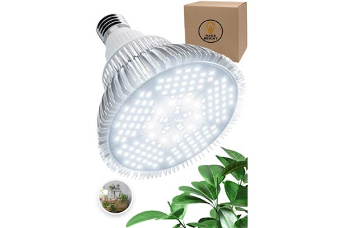 100W LED Grow Light Bulbs - White Full Spectrum Plant Light for Indoor Plants, Garden, Aquarium, Vegetables, Greenhouse & Hydroponic Growing by Haus Bright