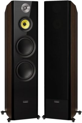 Fluance Floor Standing Speakers