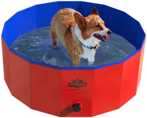 Pet Pool and Bathing