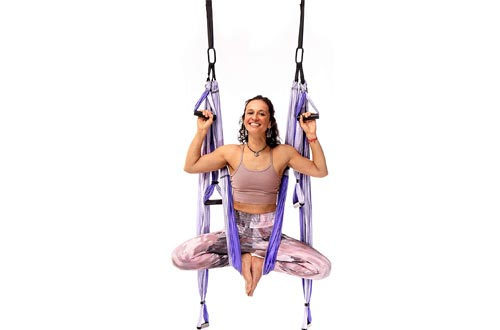 YOGABODY Yoga Trapeze Pro – Yoga Inversion Swings with Free Video Series and Pose Chart, Purple