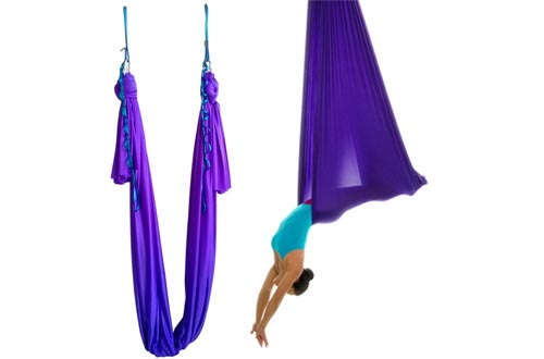 WELLSEM Aerial Yoga Hammock 5.5 Yards Yoga Swings Pilates Silk Home Fitness Include Carabiner,Daisy Chain, Pose Guide