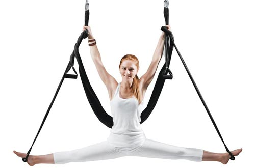 EUROSPORTS High Load Capacity Aerial Yoga Swings/Inversion/Hammock/Sling for Flying Antigravity with a Carrying Bag