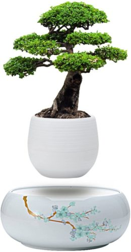 Active Gear Guy Levitating Mini Plant Pot with Japanese Style Design for Flowers Or Bonsai. Magnetic Levitation Creates A Beautiful Floating Display.
