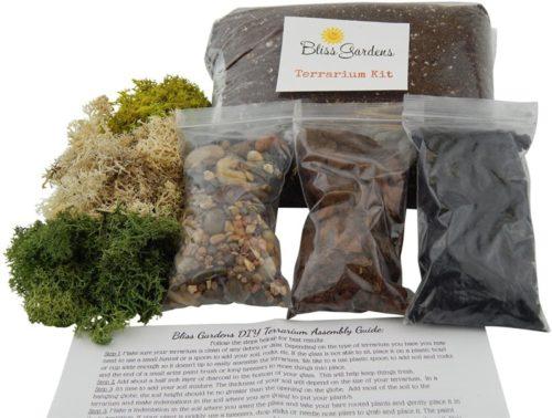 self sustaining terrarium kit