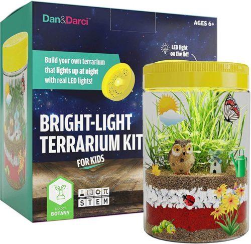 tiny terrarium kit