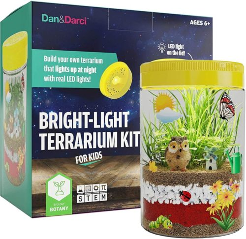 tiny terrarium kit
