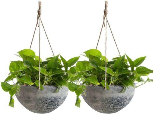 indoor hanging planter