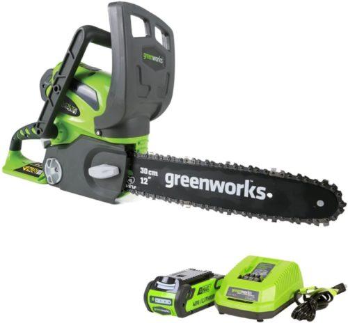 #4. Greenworks