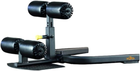 The Abs Company Sissy Squat Machines