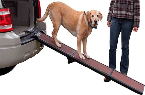 Dog Ramps